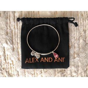 Alex and Ani - Silver Charm Bangle